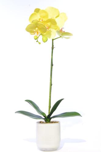 orquidea mariposa 51 cm amarilla con matera