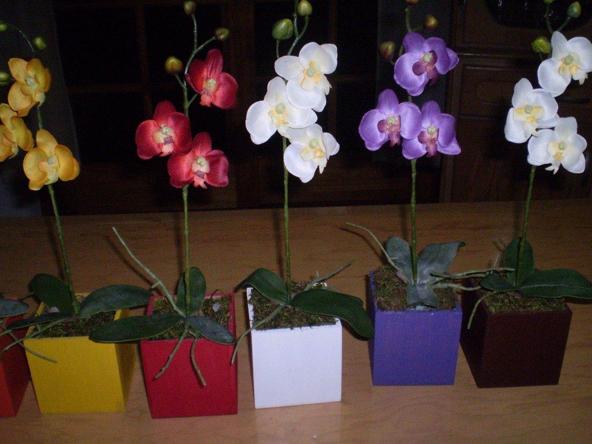 Orquideas en flor en maceta mdn en mercado libre - Maceta para orquideas ...