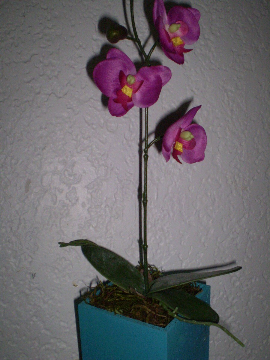 Orquideas en maceta artificiales extenso surtido 545 for Orquideas artificiales