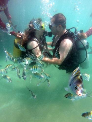 os melhores passeios de maragogi estão na mergulhodeponta