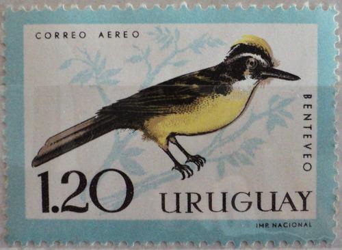 osl sello áereo 237 mint uruguay pájaro benteveo