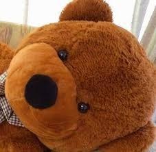 oso de peluche gigante grande 90cm