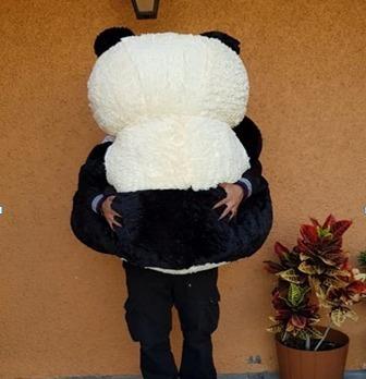 oso panda grande peluche 1.95  cm circunferencia