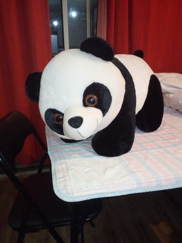 oso panda peluche