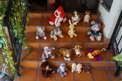 oso, perro, buho, gato, girafa, ositos cariñositos, pooky