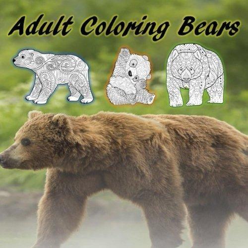 Osos Para Colorear Adultos Oso Polar Oso Negro Oso Pardo
