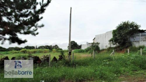 ótima área de 5.000m² em araucária, industrial/comercial a 100m da av das indústrias - te0258