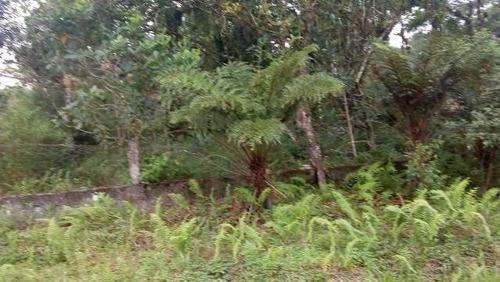 ótima chácara cercada no jardim são fernando - ref 4291