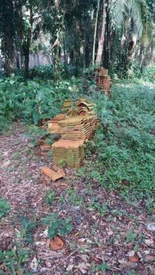 ótima chácara no jardim são fernando, em itanhaém - ref 4430