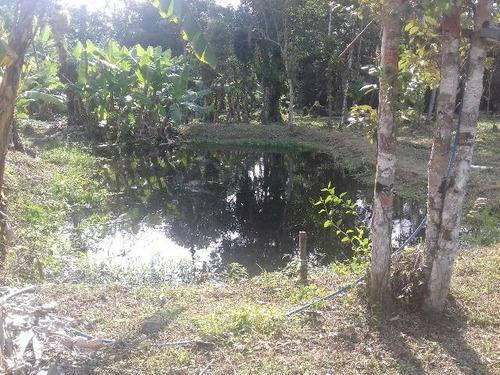 ótima chácara no parque real, em itanhaém - ref3500