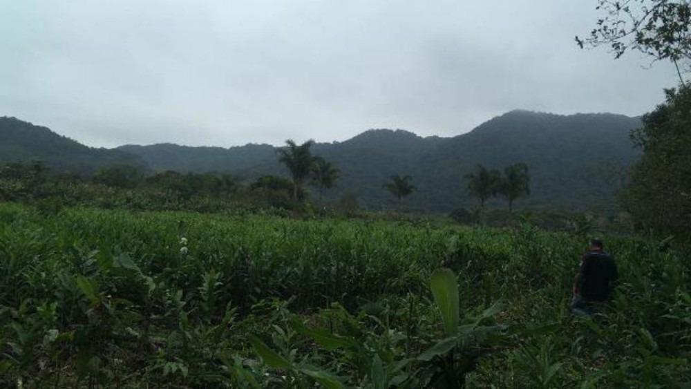 ótimo sítio no jardim mambu, em itanhaém, litoral sul de sp