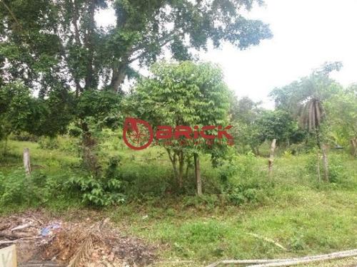 ótimo terreno com mais de 7.000m² em guapimirim - st00045 - 32377669