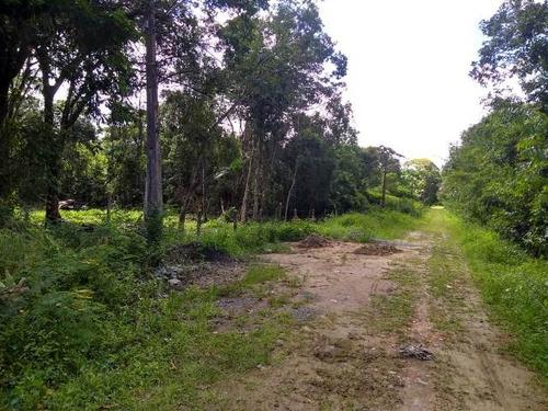 ótimo terreno de chácara no jardim aguapeú - ref 4664