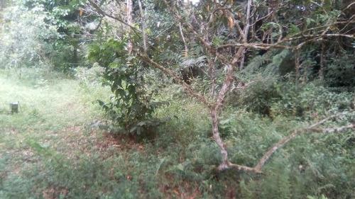 ótimo terreno de chácara plano no bairro bopiranga  ref 3951