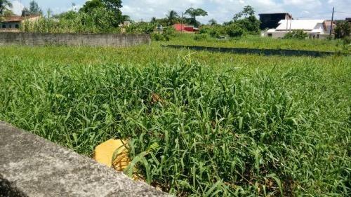 ótimo terreno no bairro raul cury, em itanhaém
