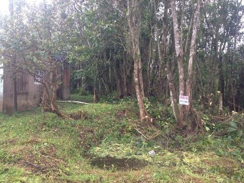 ótimo terreno no jardim coronel, em itanhaém - ref 3199