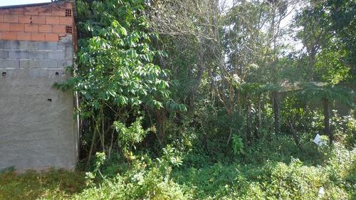 ótimo terreno no jardim guacyra, em itanhaém 360m²  ref 4526
