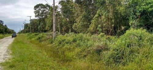 ótimo terreno no jardim marambá, em itanhaém - ref 4196