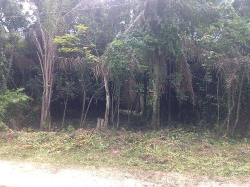 ótimo terreno no jardim palmeiras, em itanhaém - ref 2764