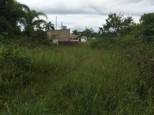 ótimo terreno no jardim palmeiras, em itanhaém - ref 3669