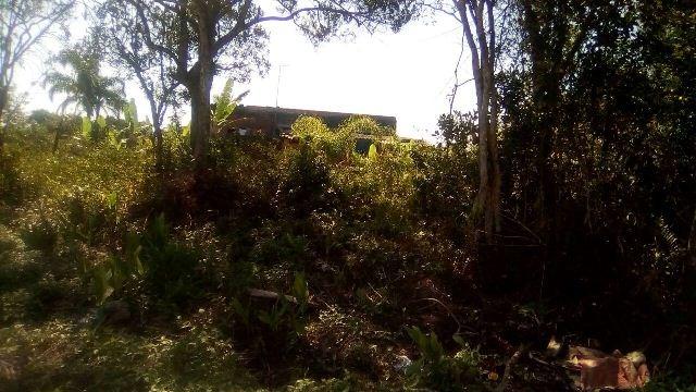 ótimo terreno no jardim palmeiras em itanhaém, rua calçada.