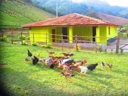 ótimo terreno para criar seus animais. 036