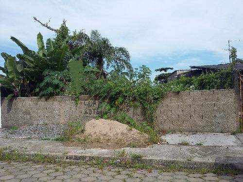 ótimo terreno plano e murado no jardim califórnia - ref 3933