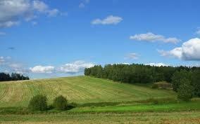 ótimos terrenos 1000m² - 035