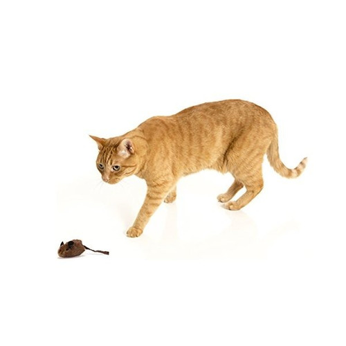 ourpets play-n-squeak toy cat mousehunter
