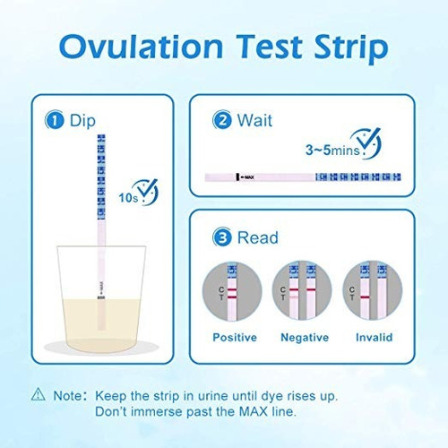 ovulación test embarazo