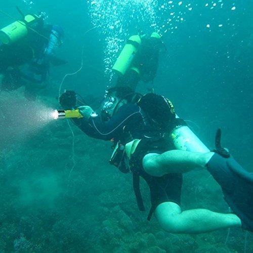 oxyled oxywild df20 recargable super brillante led submarino