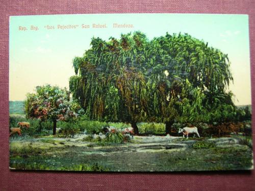 p199 postal mendoza: san rafael - los pejecitos