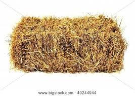 pacas de pasto bermuda 12 kg aproximado