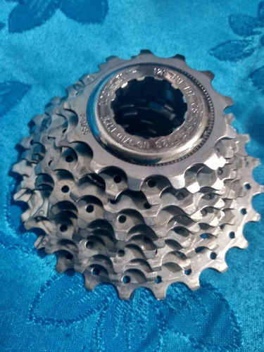 pacha campagnolo