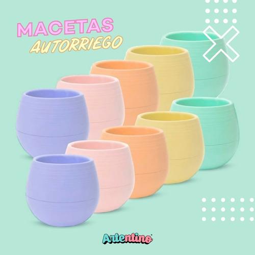 pack 5 maceta autorriego cactus suculentas colores pastel