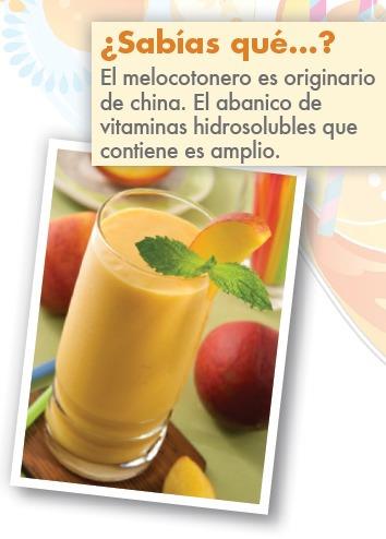 Pack 90 Recetas De Smoothies Frutas Jugos Batidos obsequio S 3