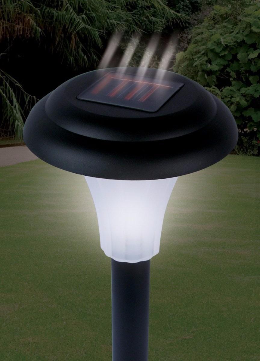 Pack d 8 lamparas solares de led p jardin prend - Lamparas solares para jardin ...