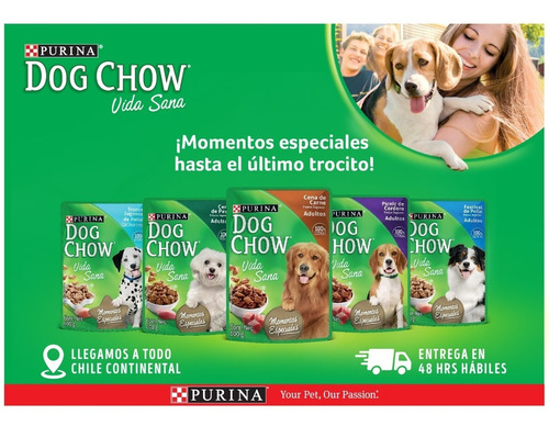 pack dog chow® adulto picnic de cordero 100g