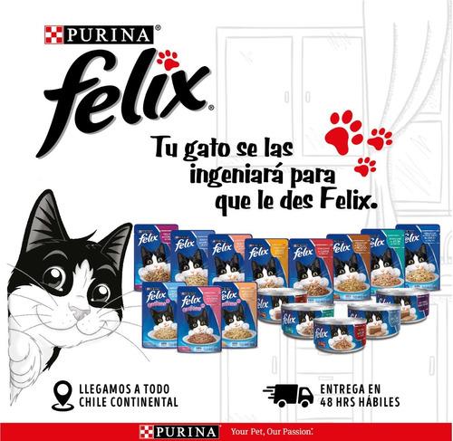 pack felix® adultos trocitos pollo en salsa 156 gr