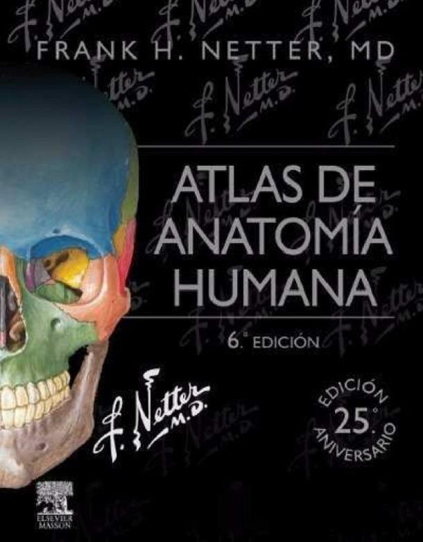Pack Gray. Anatomía + Netter. Atlas + Moore. Embriología ...