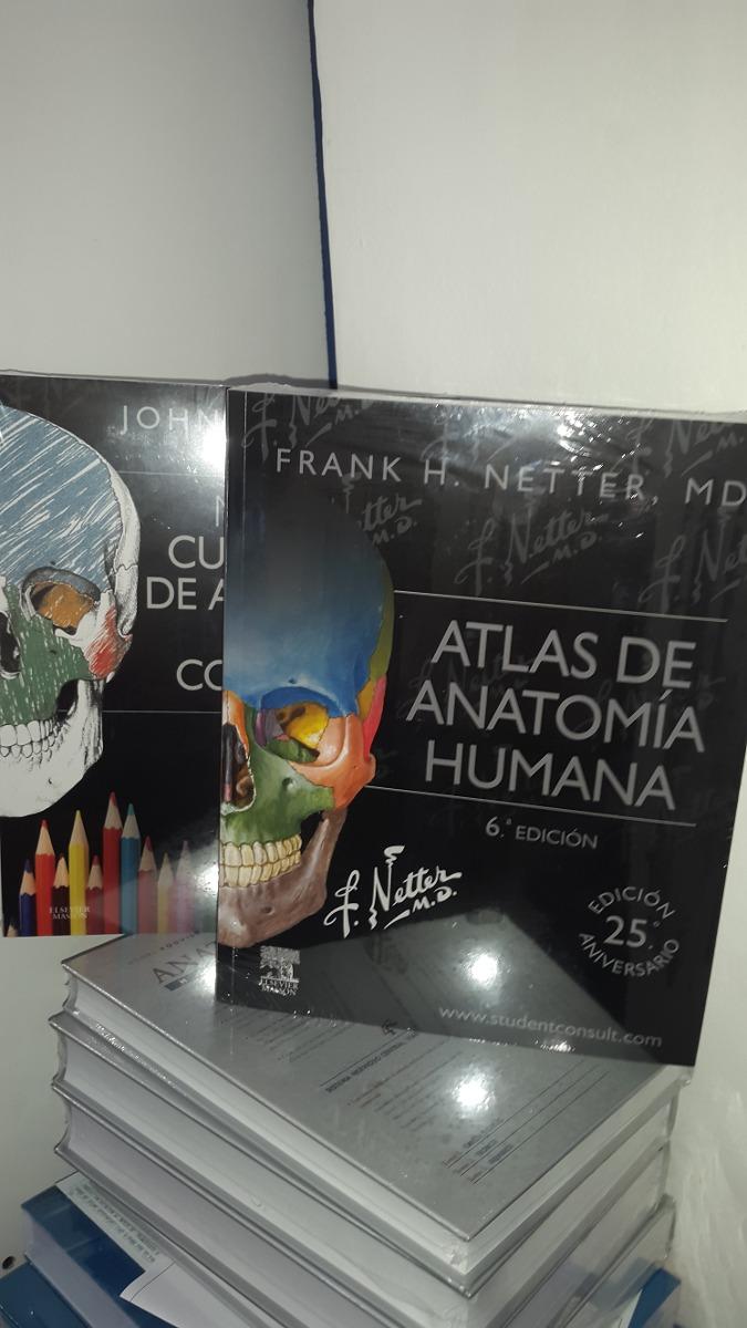Atractivo El Libro De Colorear De Anatomía 4ª Edición Festooning ...
