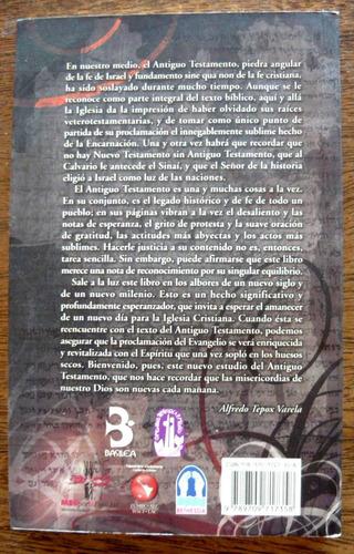 pacto pueblo e historia, cervantes ortiz, basilea