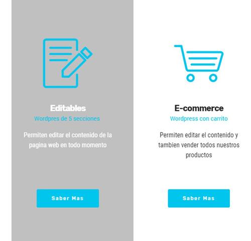 página web diseño web hosting dominio economica