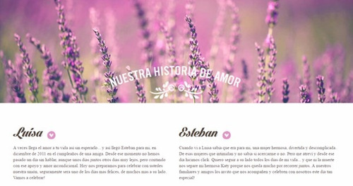 página web para boda matrimonio