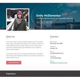 Página Web Vendedora (landing Page) Servicio Freelancer