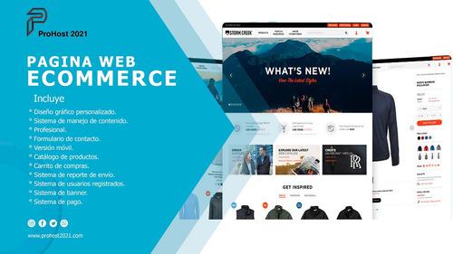 paginas web / diseño grafico