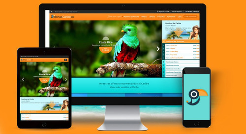paginas web, e-comerce, tienda virtuales, web master