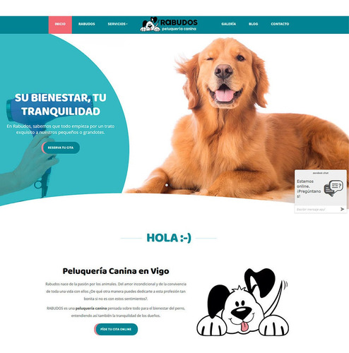 páginas web en lima perú