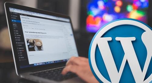 paginas web wordpress a medida autoadministrables