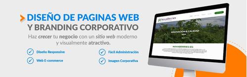 páginas web y tiendas virtuales full hosting+dominio